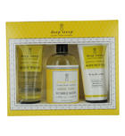 Women - Set Grapefruit Bergamot Organic Shea Butter Body Wash