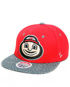 Men - Ohio State Buckeyes Elephant print snapback hat (Drjays.com Exclusive)
