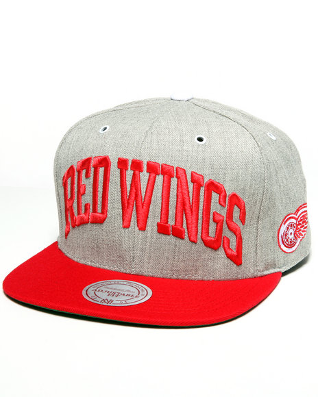 detriot red wings nhl vintage basic arch grey 2t snapback cap