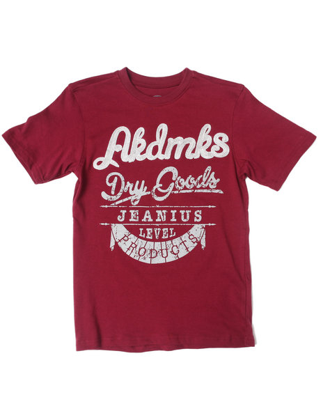 Akademiks - Boys Maroon Akdmks Dry Goods Tee (8-20)