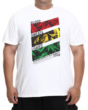 LRG - Blood Sweat & Leaves S/S Tee (B&T)