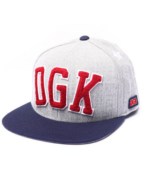 Dgk Men Worldwide Snapback Cap Grey
