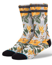 Buyers Picks - Kahuku Socks
