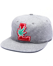 LRG - Lifted Degenerates Strapback